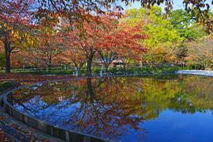 新潟市民芸術文化会館の遊歩道の写真素材 [FYI01630815]