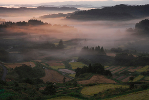秋の田園風景と山並みの写真素材 [FYI01630863]