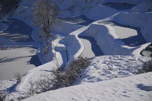 雪の棚田の写真素材 [FYI01630864]