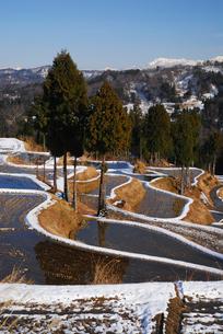 冬の棚田の写真素材 [FYI01630875]