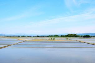 田植え前の越後平野の写真素材 [FYI01630938]