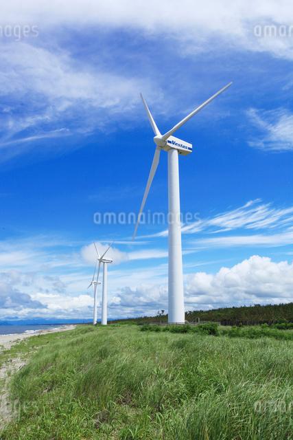 風力発電の写真素材 [FYI01630992]