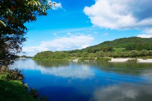 秋の三面川の写真素材 [FYI01631052]