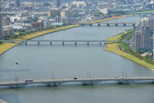 信濃川と新潟市の街並の写真素材 [FYI01631085]