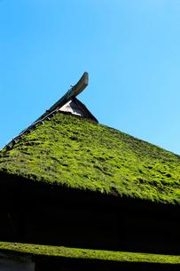 茅葺き屋根の写真素材 [FYI01631115]