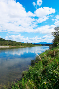 秋の三面川の写真素材 [FYI01631143]