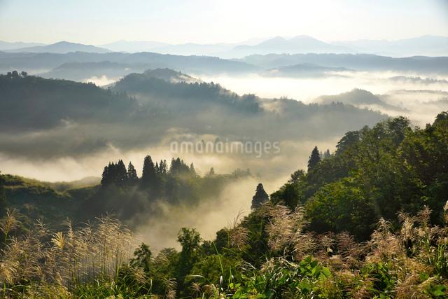 朝もやに包まれた山並みの写真素材 [FYI01631185]