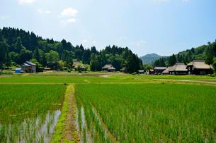 荻ノ島かやぶきの里の田園風景の写真素材 [FYI01631362]