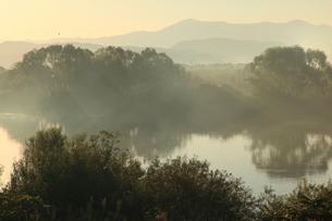 朝もやと信濃川の写真素材 [FYI01631375]