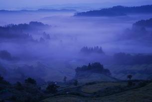 霧の中の棚田の写真素材 [FYI01631385]