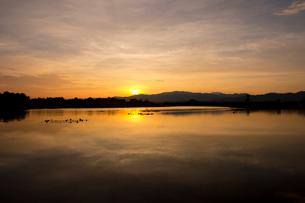 福島潟の朝の写真素材 [FYI01631463]