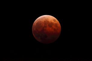 月食の写真素材 [FYI01631470]