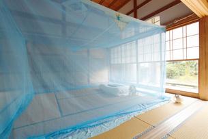和室に蚊帳の写真素材 [FYI01631491]