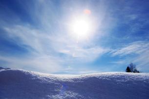 雪原と青空の写真素材 [FYI01631580]