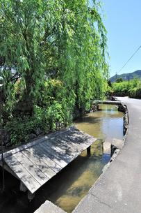 藍場川の写真素材 [FYI01631665]