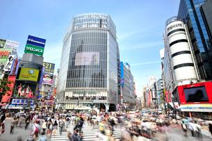 渋谷駅前交差点の写真素材 [FYI01631780]
