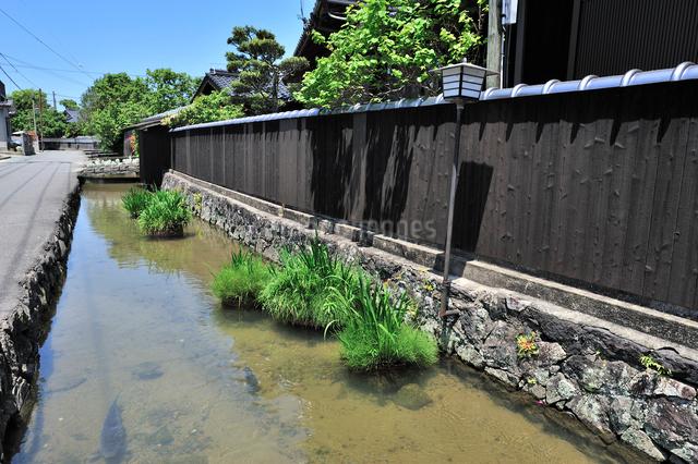 藍場川の写真素材 [FYI01631866]