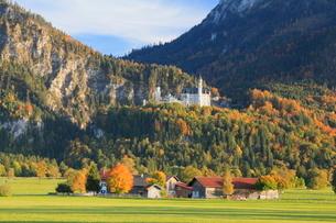 秋のノイシュヴァンシュタイン城の写真素材 [FYI01632249]