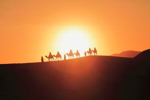 メルズーガ大砂丘とラクダと朝陽の写真素材 [FYI01632304]