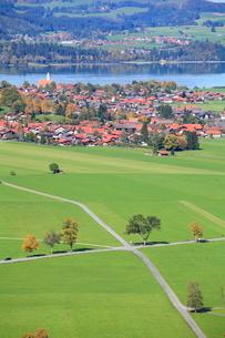 ノイシュヴァンシュタイン城よりシュヴァンガウの街並みと道の写真素材 [FYI01632325]