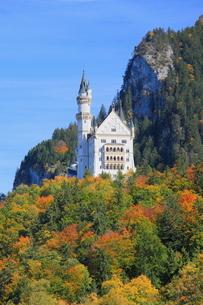 秋のノイシュヴァンシュタイン城の写真素材 [FYI01632504]