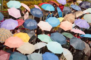 傘のパターンの写真素材 [FYI01632938]