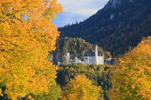 秋のノイシュヴァンシュタイン城の写真素材 [FYI01632975]