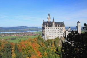 秋のノイシュヴァンシュタイン城の写真素材 [FYI01632977]