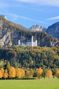 秋のノイシュヴァンシュタイン城の写真素材 [FYI01633237]