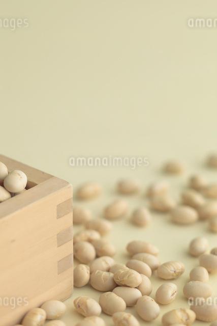 枡と節分の煎り豆の写真素材 [FYI01634889]