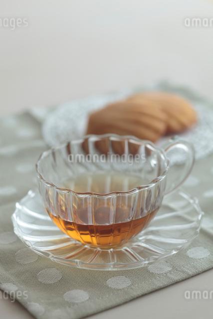 ガラスのティーカップとマドレーヌの写真素材 [FYI01635000]