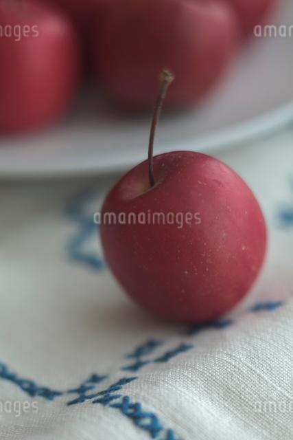 姫リンゴの写真素材 [FYI01635099]