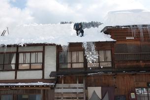 雪の白川郷合掌集落で屋根の雪下ろしの写真素材 [FYI01635289]