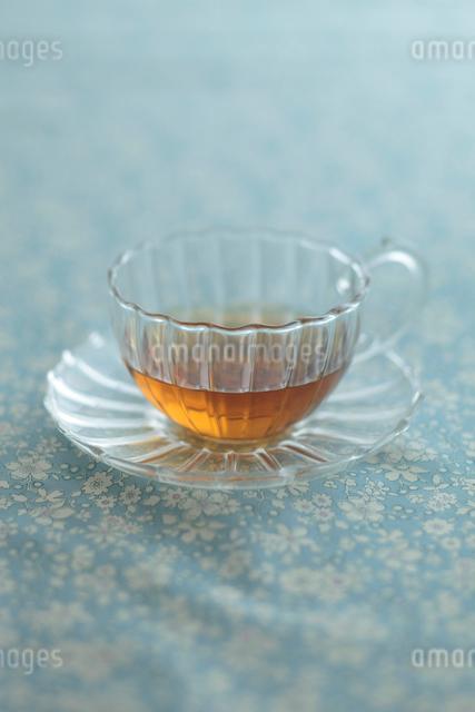 ガラスのティーカップの写真素材 [FYI01635463]