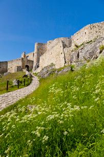 スピシュ城の写真素材 [FYI01635568]