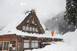 雪の五箇山合掌集落で屋根の雪下ろしの写真素材 [FYI01635780]