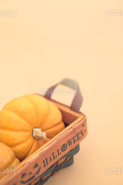 ハロウィンのカボチャの写真素材 [FYI01635907]