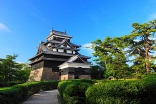 松江城の写真素材 [FYI01635972]