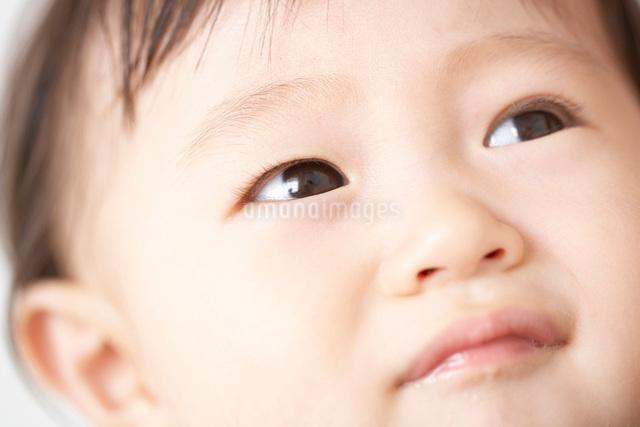 赤ちゃんのアップの写真素材 [FYI01636117]