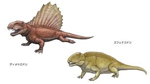 ペルム紀 北アメリカの恐竜のイラスト素材 [FYI01636200]
