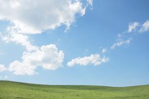 草原と青空の写真素材 [FYI01636546]