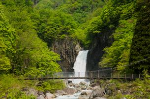 苗名滝の写真素材 [FYI01636940]