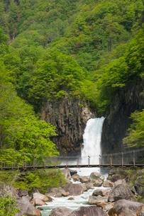 苗名滝の写真素材 [FYI01636960]