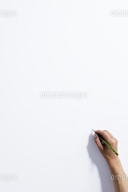 手の写真素材 [FYI01637344]