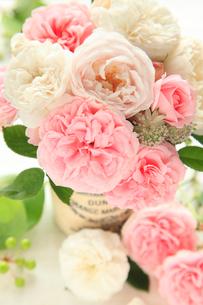 庭のバラの写真素材 [FYI01637409]