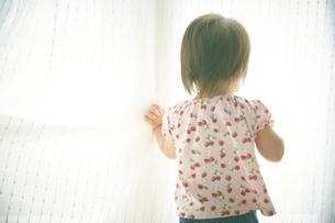 カーテンを開こうとしている赤ちゃんの写真素材 [FYI01637413]