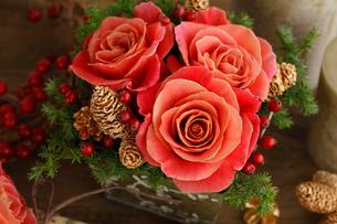 小さなクリスマスの写真素材 [FYI01637433]