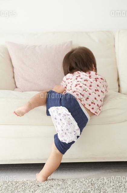ソファーによじ登じのぼる赤ちゃんの写真素材 [FYI01637468]