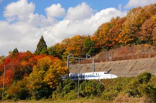 東海道新幹線の写真素材 [FYI01637503]