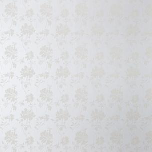 花柄ホワイト壁の写真素材 [FYI01637511]